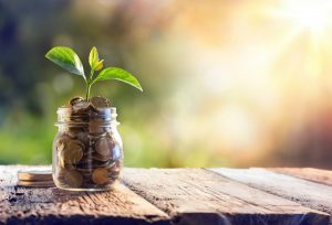 How to Grow Your Savings Account